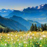 switzeland-tour
